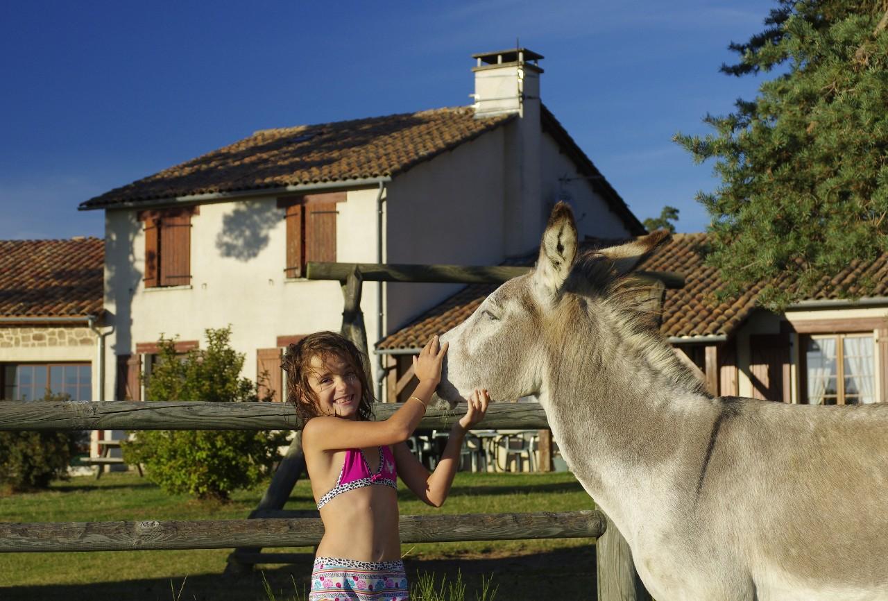 maison-hotes-stflour-margeride-cantal-auvergne-piscine-10